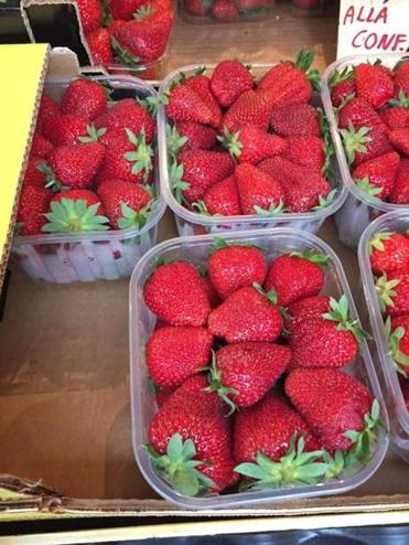10travitaly - In Italy in season fresh strawberries with ice cream is served everywhere. (Sheryl Julian/Globe Staff)
